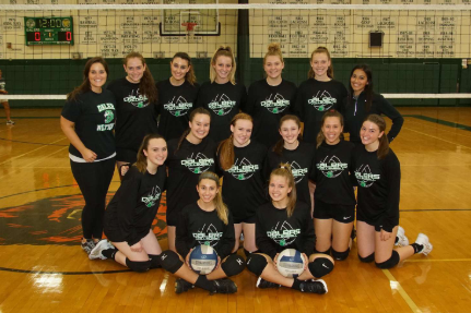 Lady Dalers Volleyball